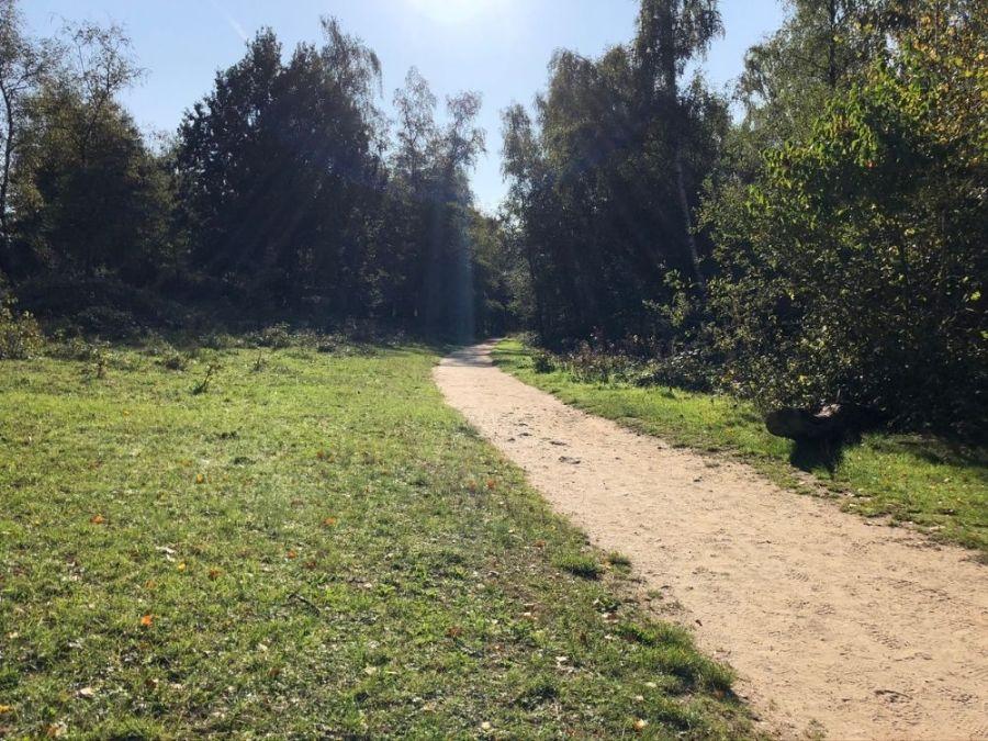 Rondje Kwintelooijen (2)