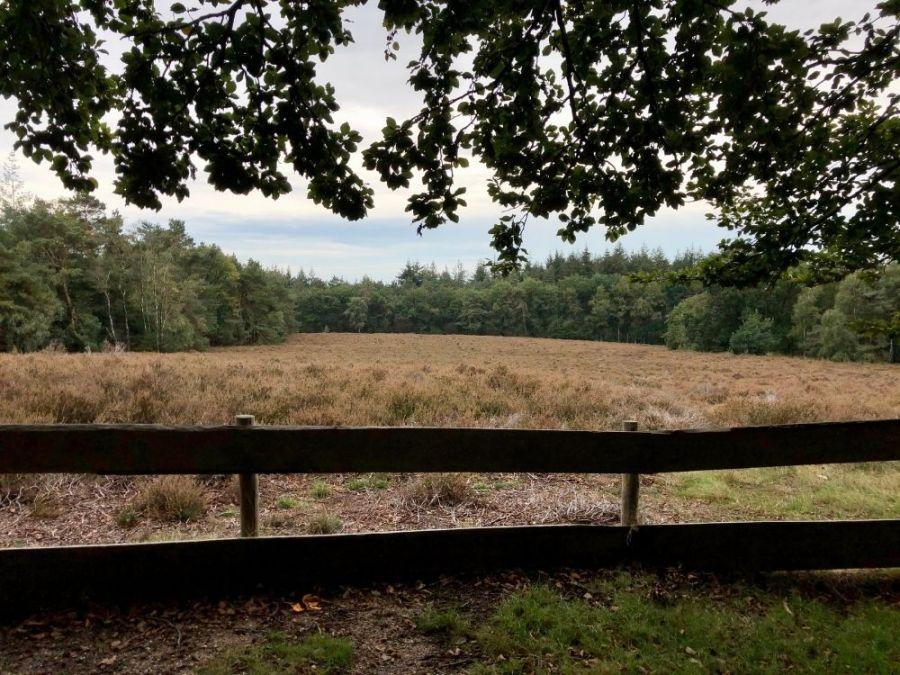 Wandelroute Prattenburg Heide