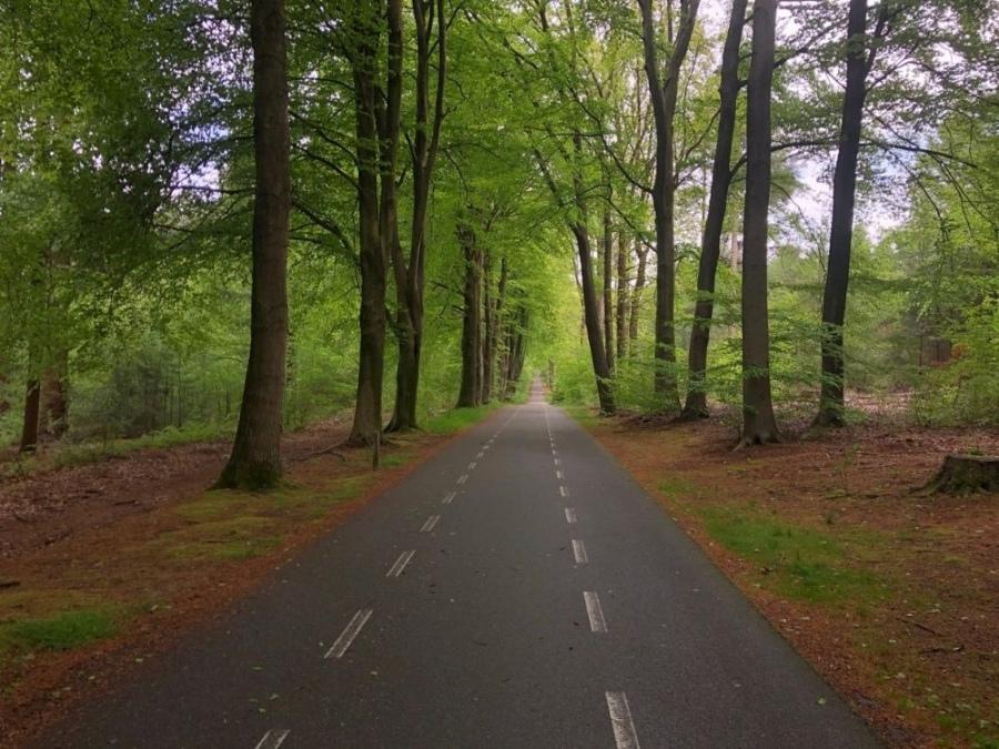 Fietsroute Rhenen Veenendaal Prattenburg Autoweg