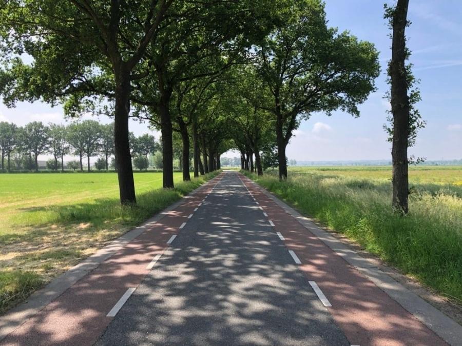 Fietsroute Rondje Binnenveld vanuit Rhenen