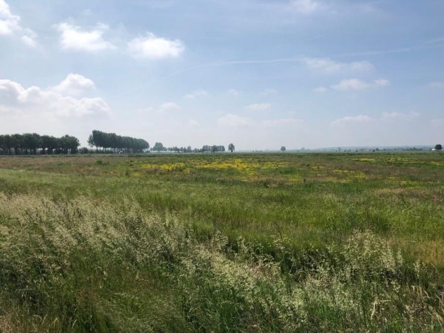 Fietsroute Rondje Binnenveld Rhenen Hooilanden