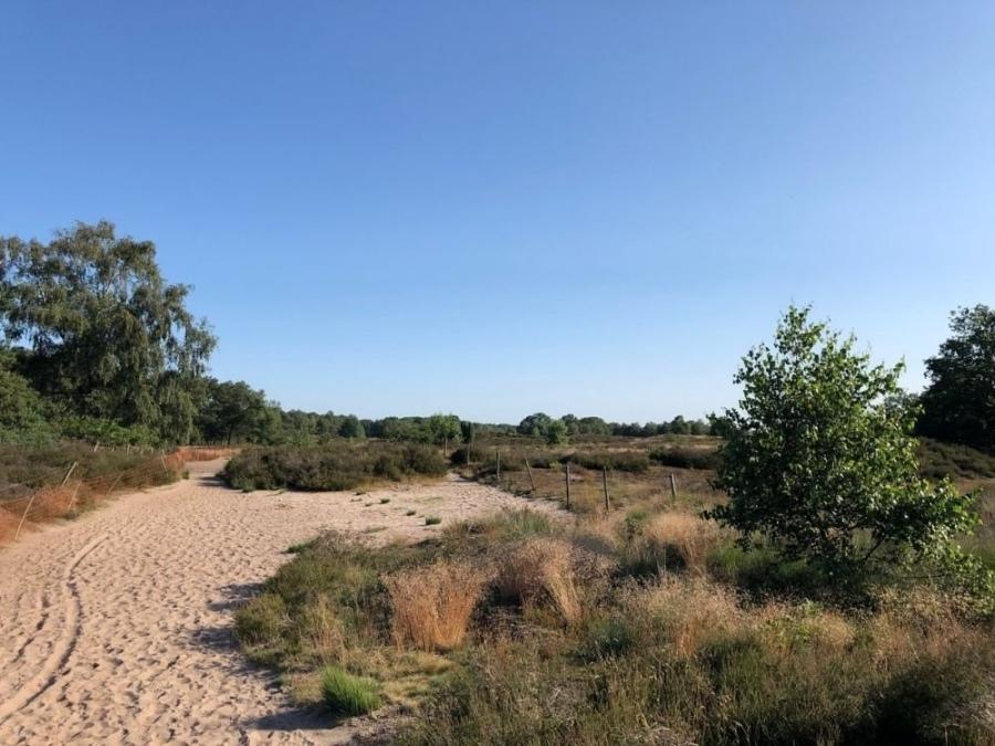 Wandelen Trage Tocht Veenendaal Heide