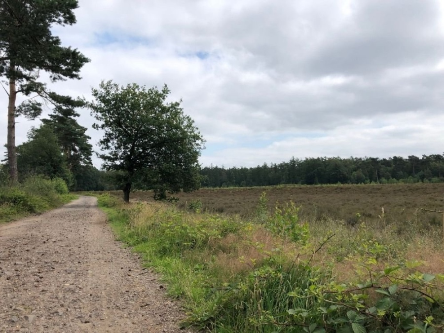 Egelmeer Fietsroute Utrechtse Heuvelrug Rhenen